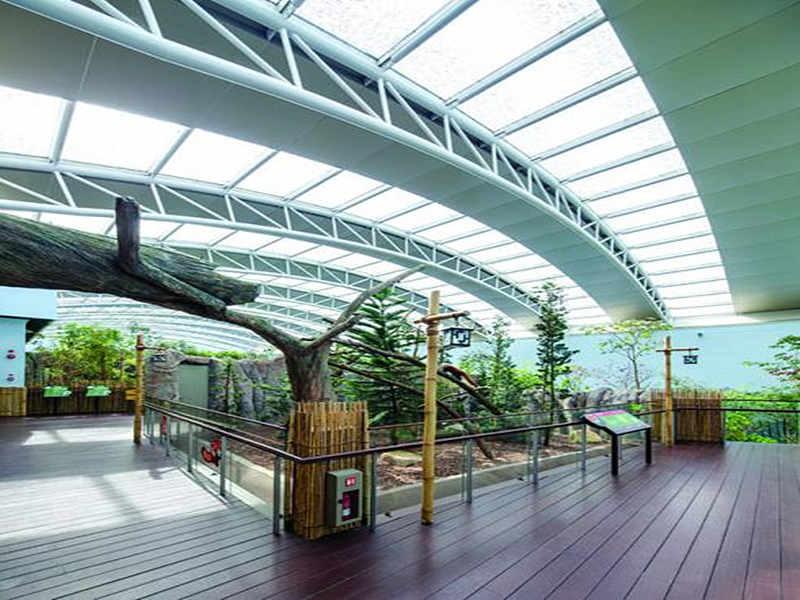 singapore zoo 3