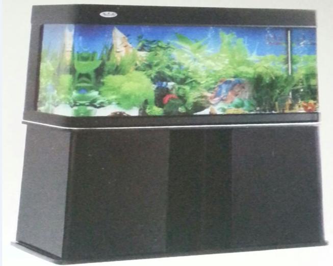 aquariums 1