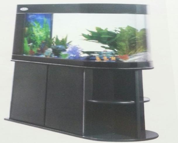 aquariums 14