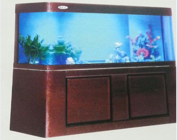 aquariums 3