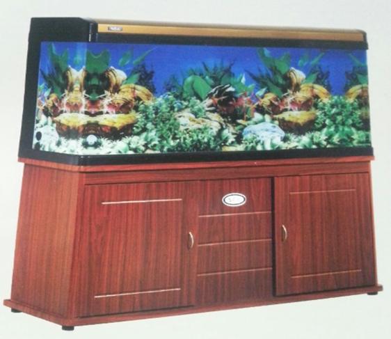 aquariums 6