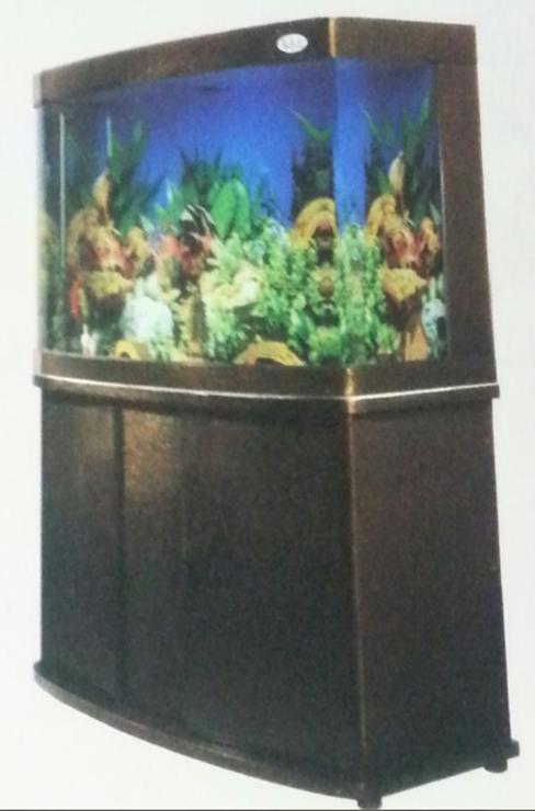 aquariums 8